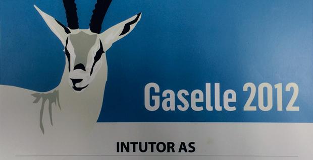 intutor-gaselle-2012-bedrift